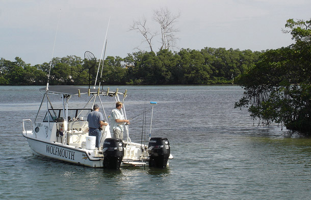 Wolfmouth Charters Florida Experience