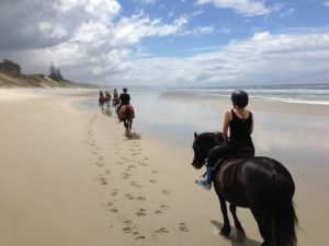 Beach Horseback Riding